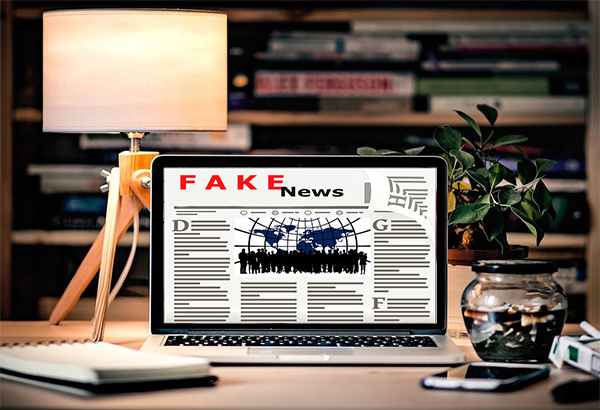 Picture of Fake news website